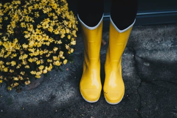 Yellow rain boots standing on front porch steps with yellow flowers next to them.